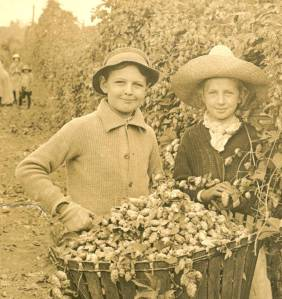 Oregon children harvesting hops, 1915